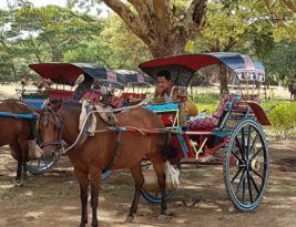 Myanmar. In Search Of Horse Cart 101…