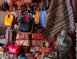 What does a handbag and a pigeon have in common?