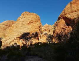 The Bungle Bungles … just fossilised beehives??